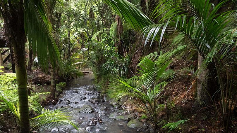 Toitū te whenua, whatungarongaro he tangata<br/>The land remains when people have disappeared